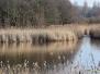Ekerse polders