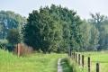27082017-borsbeek_0015