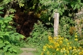27082017-borsbeek_0046