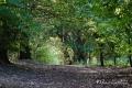 27082017-borsbeek_0126