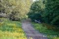 27082017-borsbeek_0146