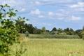03082017-molenbeekvallei_0188