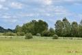 03082017-molenbeekvallei_0312