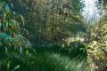 noordheuvel-31102016_0133