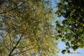 noordheuvel-31102016_0168