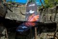 zoo-07072014_0458