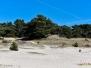 Sahara Lommel